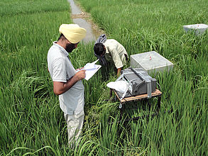 Gurbir Bhullar measuring GHG emissions from paddy fields in India
